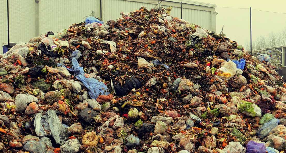 Odpady kuchenne często wyrzucane są w foliowych workach. To duży błąd.