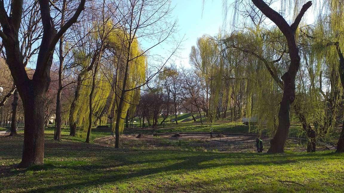 Niecka w parku przy ul. Budowlanych.