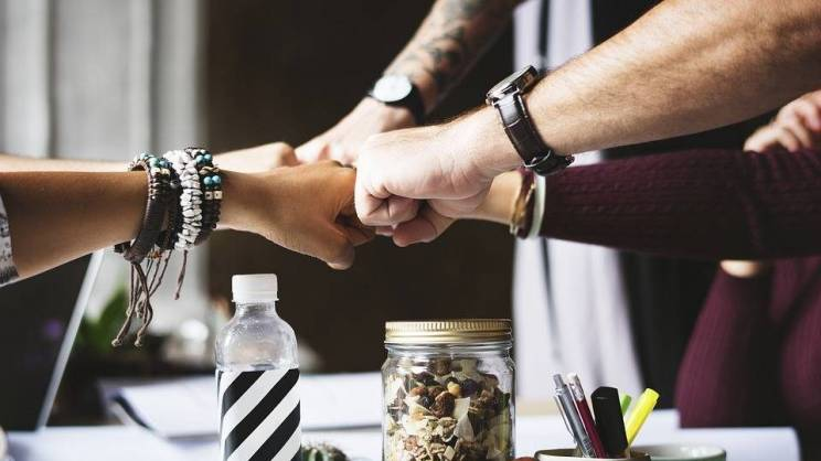 pixabay. współpraca zespół ręce