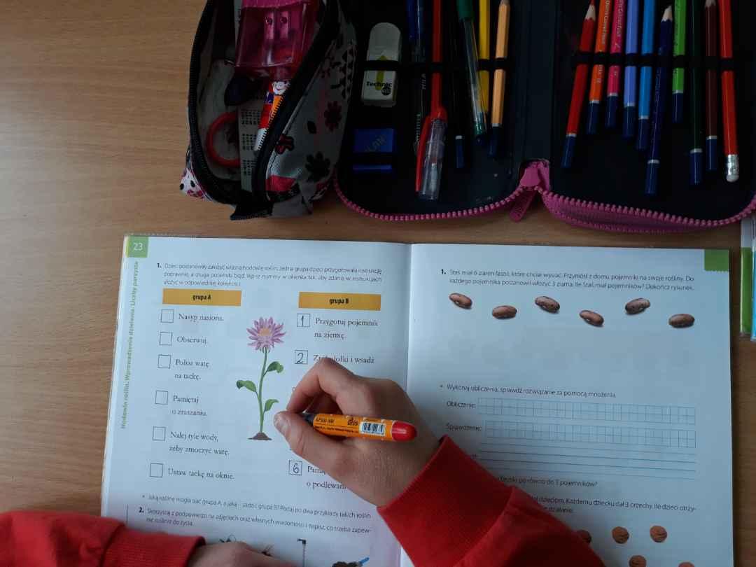 Zielone-Szkoły-KGHM-dofinansowanie-zdjęcie-pogladowe_1