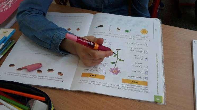 Zielone Szkoły KGHM dofinansowanie - zdjęcie pogladowe_3
