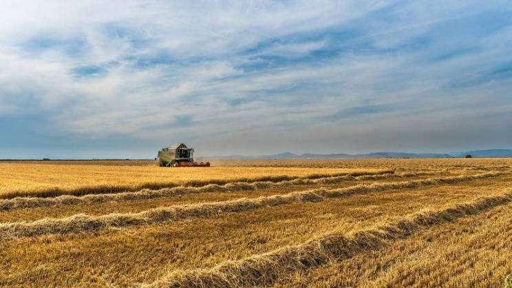rolnictwo-rolnik-pole-pixabay-zajawka-w800-h600