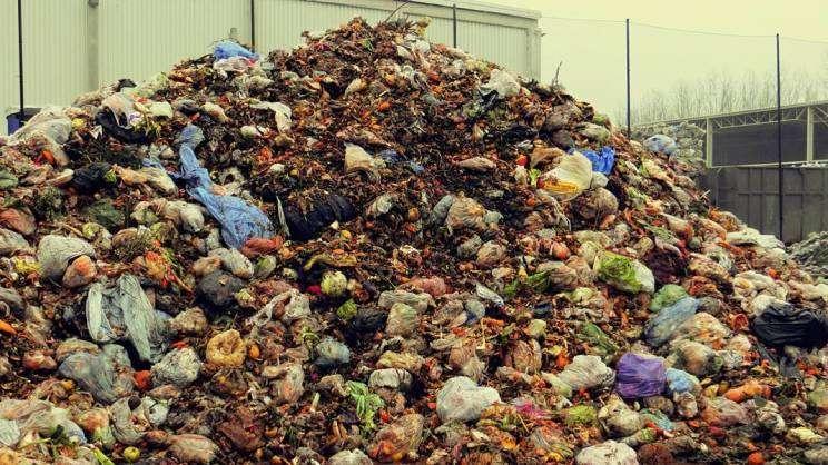 Plac przy RIPOK. Odpady kuchenne często wyrzucane są w foliowych workach. To duży błąd. - zajawka